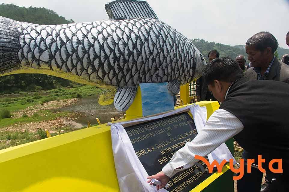 fish-sanctuary3