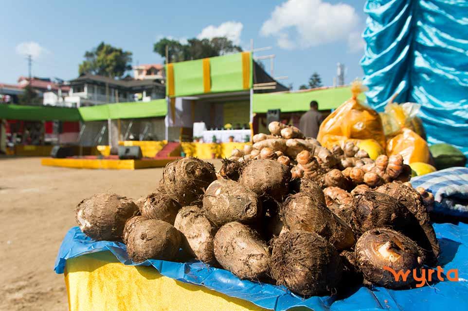 farmer's-market5